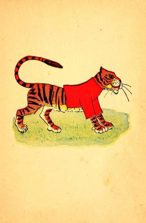 tiger-v-rdecem-plascu