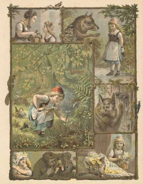 rdeca-kapica-ilustracija