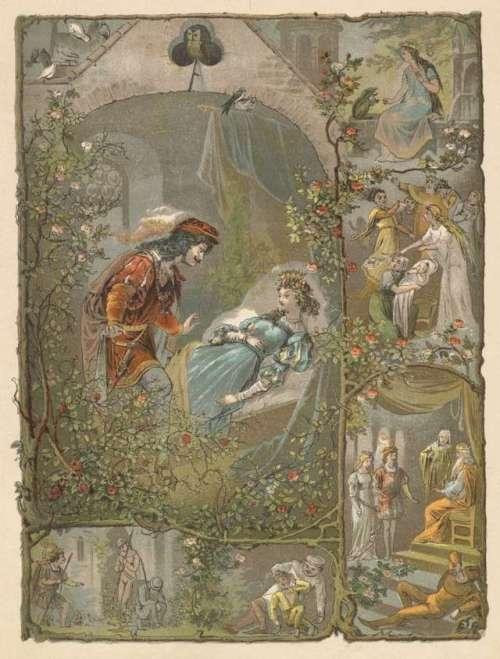 trnuljcica-ilustracija