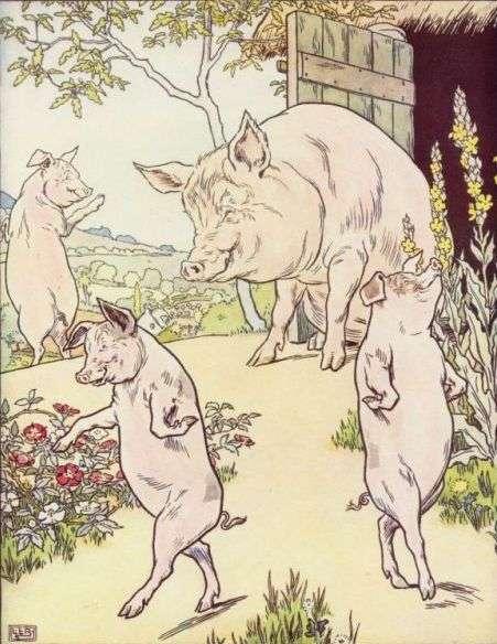 trije-prasicki-mati-jih-opazuje