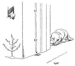 trije-prasicki-zidana-hisa-je-pretrdna-za-volka