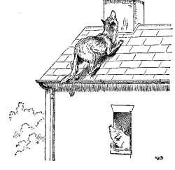 trije-prasicki-volk-na-strehi