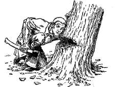 zlata-gos-drvar-seka