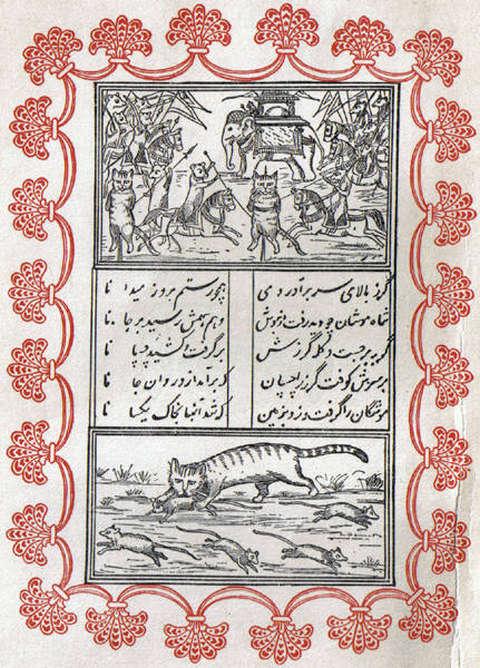 perzijska-pravljixa-macka-in-mis-uvodna-ilustracija